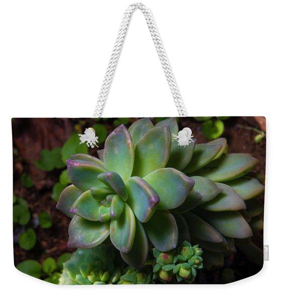 Small Succulents Weekender Tote Bag