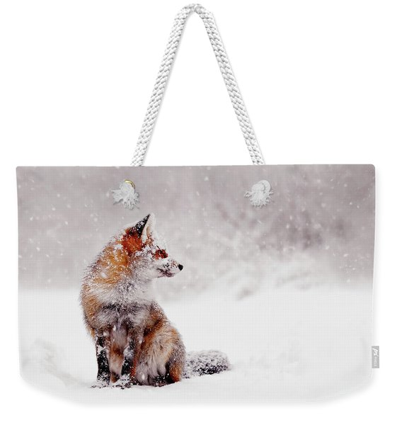 Snow Fox Series - Red Fox Sitting In A Snow World Weekender Tote Bag