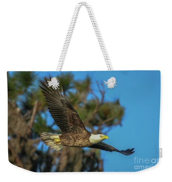 Weekender Tote Bag featuring the photograph Soaring Eagle by Tom Claud
