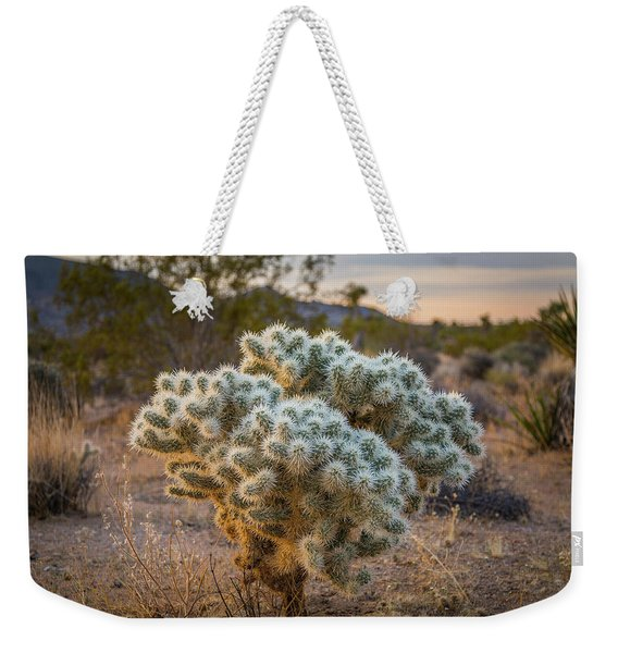 Soft And Inviting....not Weekender Tote Bag