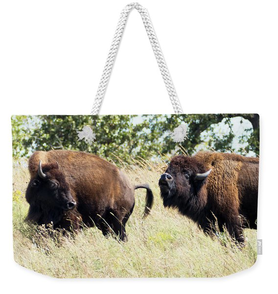 Weekender Tote Bag featuring the photograph Something Is In The Wind by Sally Sperry