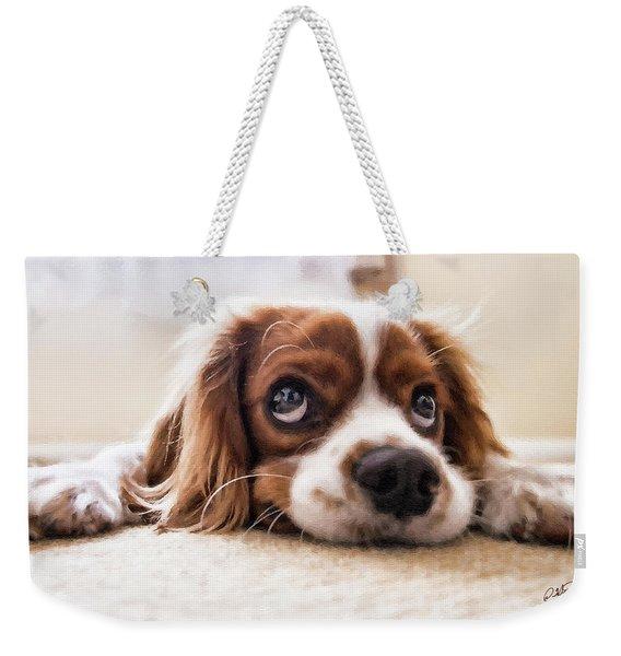 Spaniel Puppy Dwp2785074 Weekender Tote Bag