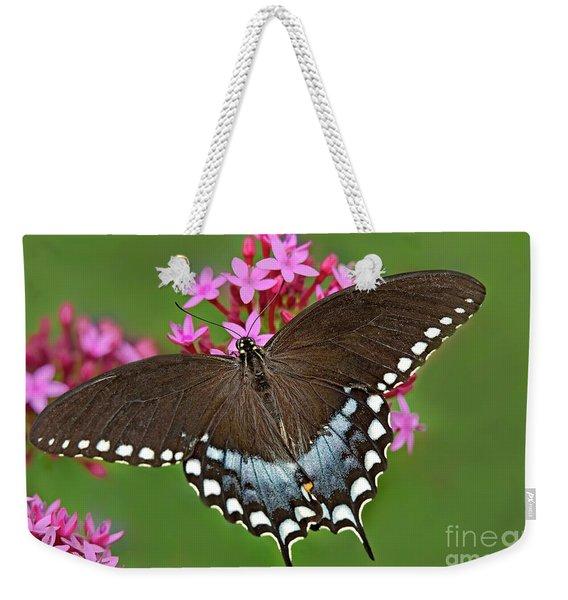Spicebush Swallowtail Papilio Trollus Weekender Tote Bag