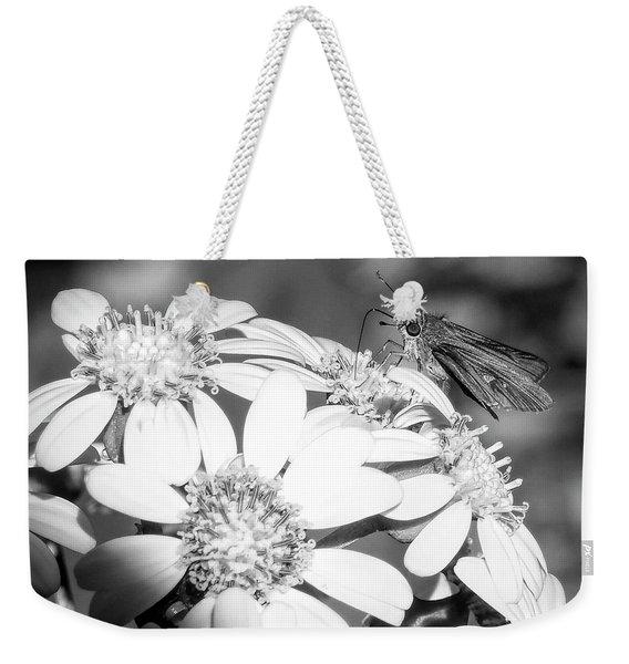 Spotlight To Pollinate Weekender Tote Bag