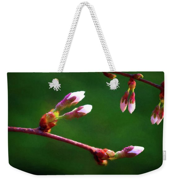 Spring Buds - Weeping Cherry Tree Weekender Tote Bag