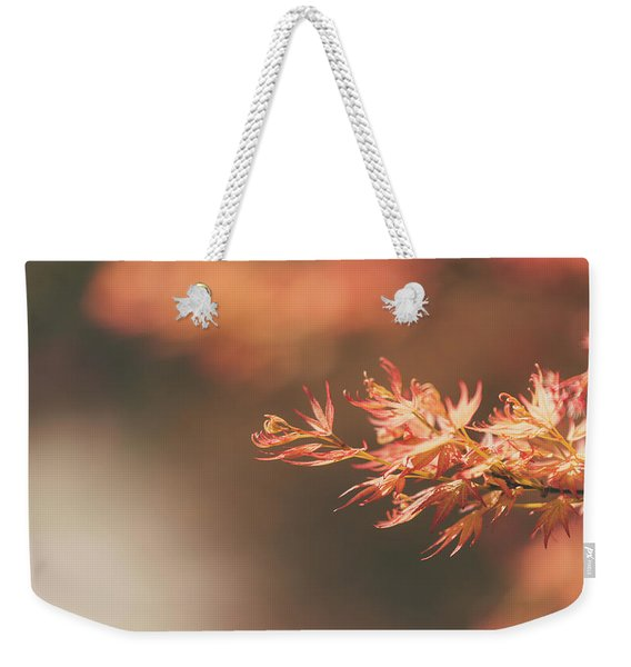 Weekender Tote Bag featuring the photograph Spring Or Fall by Dheeraj Mutha
