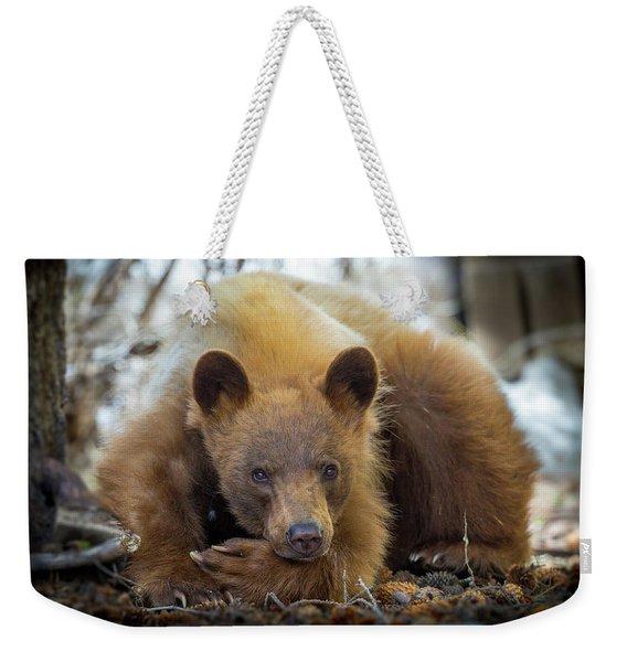 Spring Slumber  Weekender Tote Bag