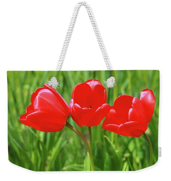Spring Trio Weekender Tote Bag