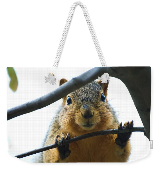 Spying Fox Squirrel Weekender Tote Bag