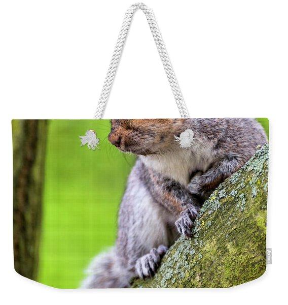Squirrel At Greenwich Park Weekender Tote Bag
