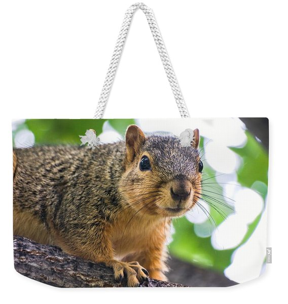Squirrel Close Up Weekender Tote Bag