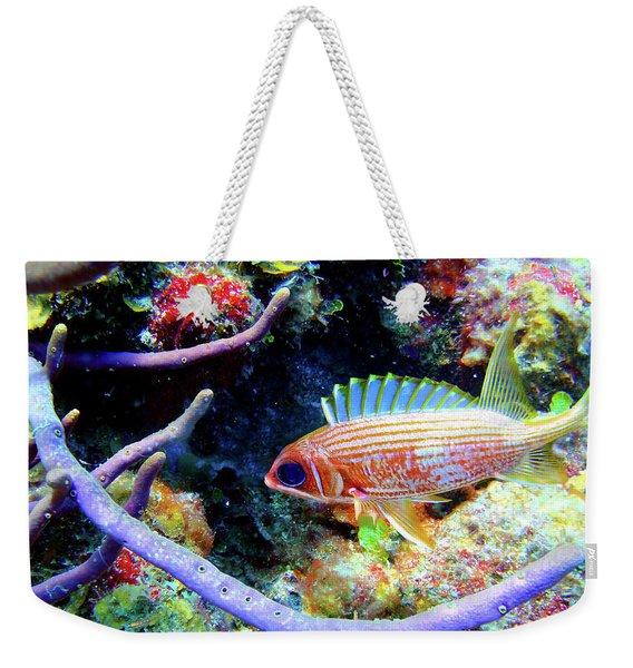 Squirrel Fish Weekender Tote Bag
