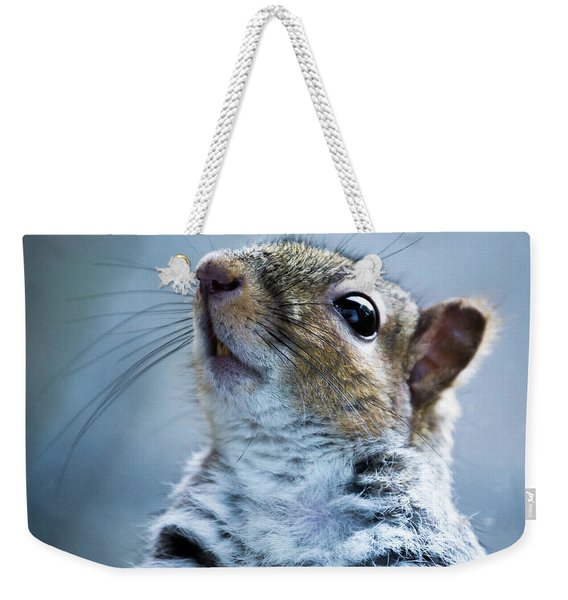 Weekender Tote Bag featuring the photograph Squirrel With Nose In The Air by Scott Lyons