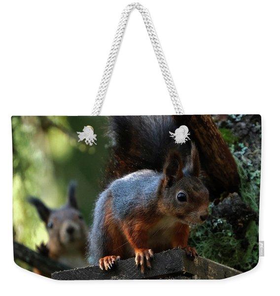 Squirrels Weekender Tote Bag