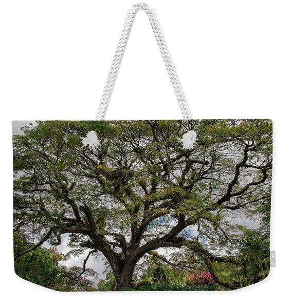 St. Kitts Saman Tree Weekender Tote Bag