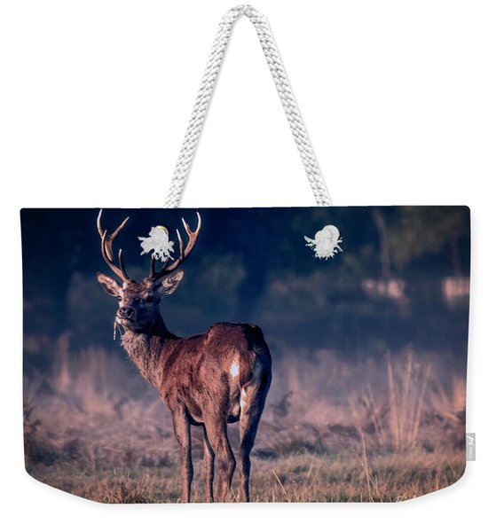 Stag Eating Weekender Tote Bag