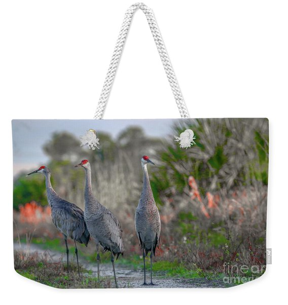 Weekender Tote Bag featuring the photograph Standing Sandhills by Tom Claud
