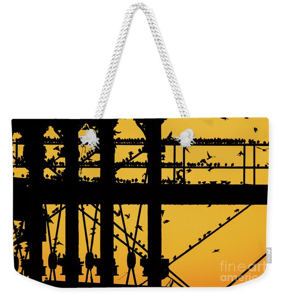 Starlings At Golden Hour On Aberystwyth Pier Weekender Tote Bag