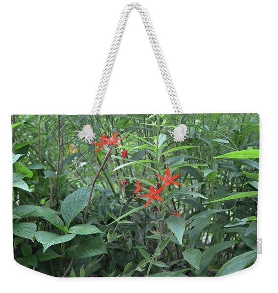 Stars Among The Foliage Weekender Tote Bag