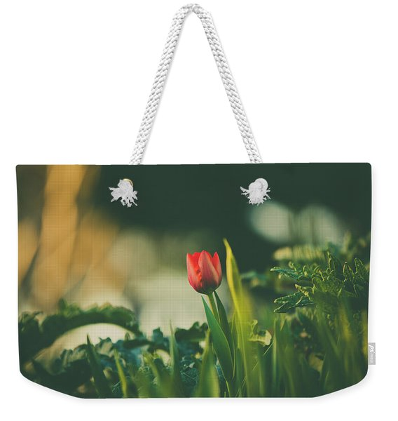 Weekender Tote Bag featuring the photograph Start Of Spring by Dheeraj Mutha