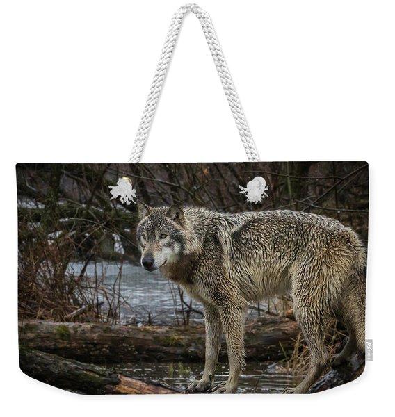 Stay Dry Weekender Tote Bag