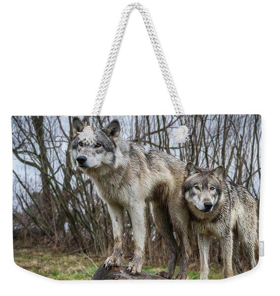 Still Lookin' Weekender Tote Bag