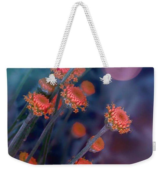 Strawflowers Weekender Tote Bag
