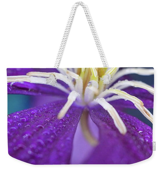 Weekender Tote Bag featuring the photograph Stretch by Michelle Wermuth