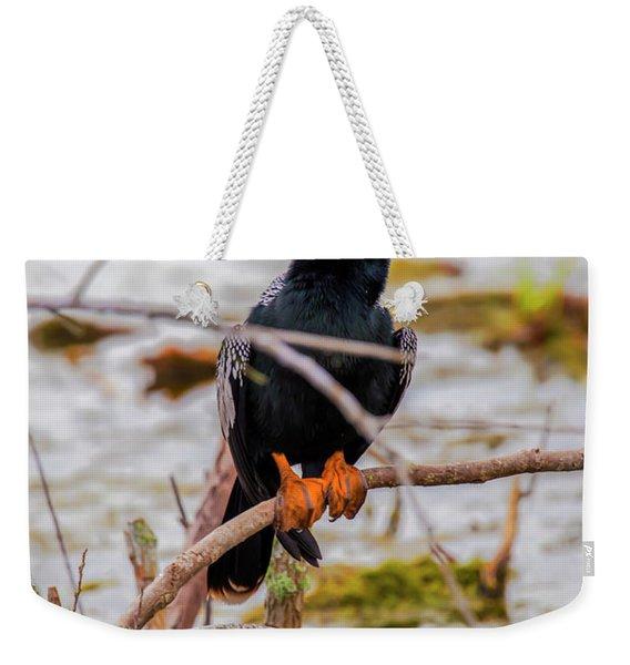 Stunning Anhinga Weekender Tote Bag