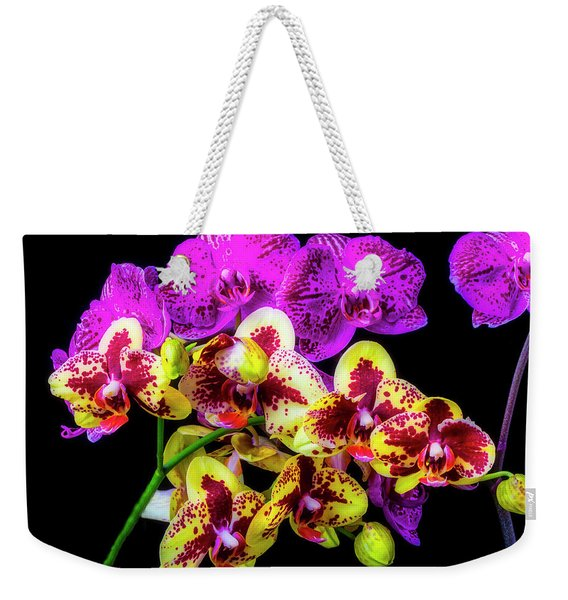 Stunning Purple Yellow Orchids Weekender Tote Bag