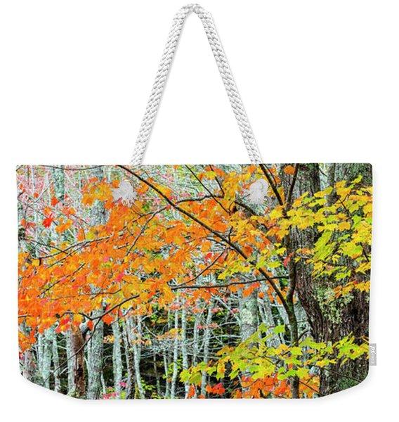 Sugar Maple Acer Saccharum In Autumn Weekender Tote Bag