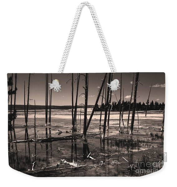 Weekender Tote Bag featuring the photograph Sulfur Field by Mae Wertz