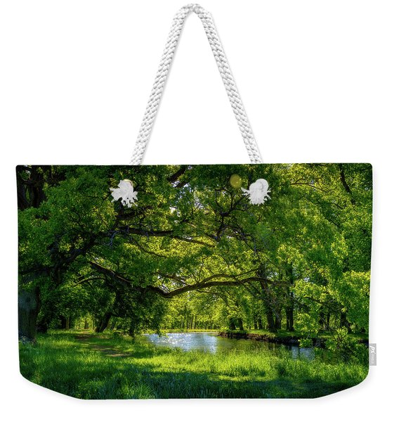 Summer Morning In The Park Weekender Tote Bag