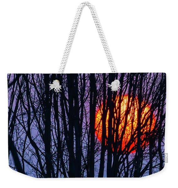 Sun Caught In Tree Branches Weekender Tote Bag
