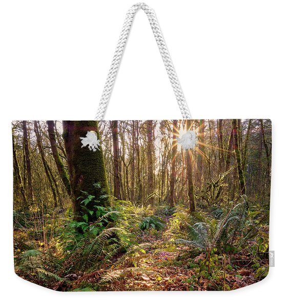 Weekender Tote Bag featuring the photograph Sun Star In Tryon Creek State Park by Whitney Goodey