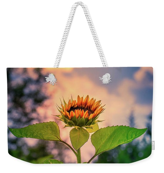 Sunflower Opening To The Light Weekender Tote Bag