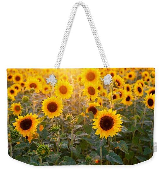 Sunflowers Field Weekender Tote Bag