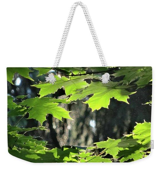 Sunlight Particles. Trees. Series. Weekender Tote Bag
