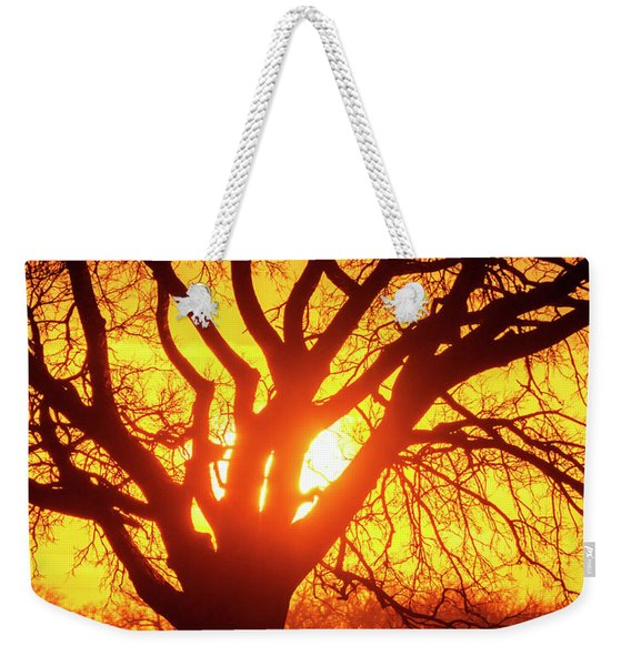 Weekender Tote Bag featuring the photograph Sunset And Tree Silhouette 03 by Rob Graham