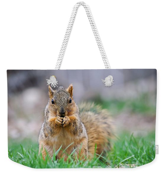 Super Cute Fox Squirrel Weekender Tote Bag