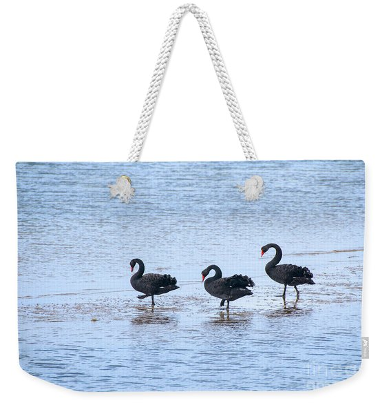 Swans On Parade Weekender Tote Bag