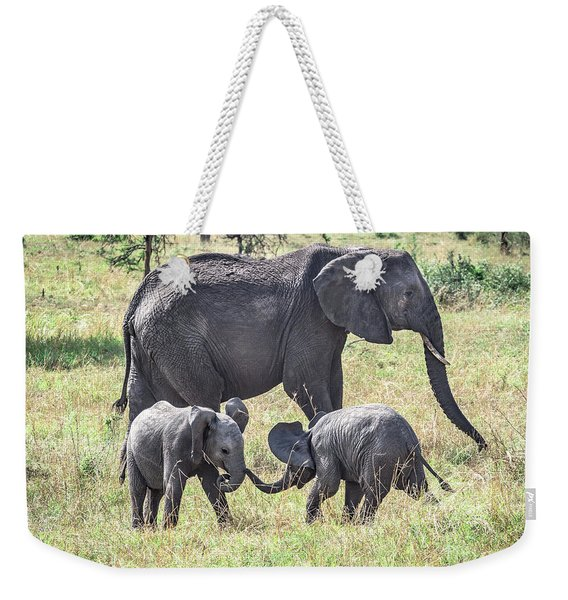 Weekender Tote Bag featuring the photograph Sweet Babies by Robin Zygelman