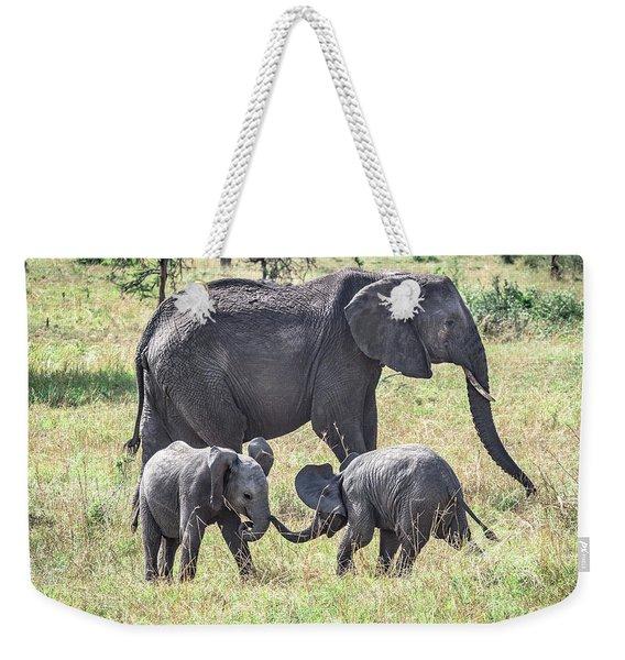 Sweet Babies Weekender Tote Bag