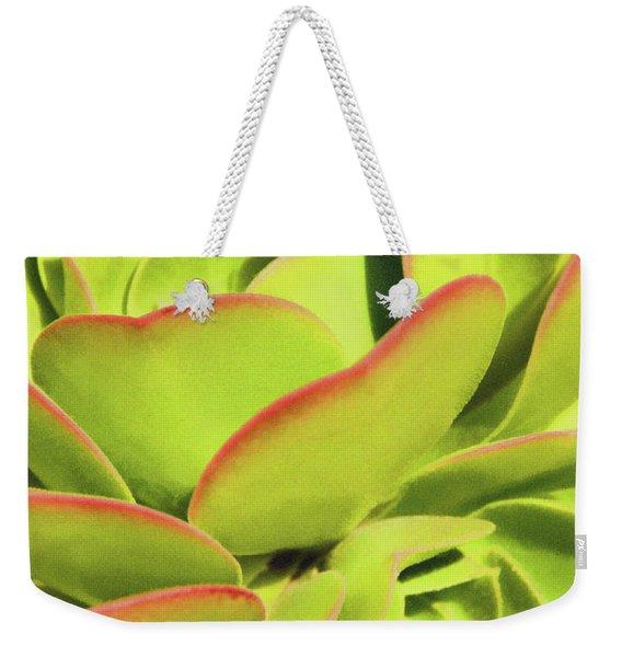 Sweet Succulents I Weekender Tote Bag