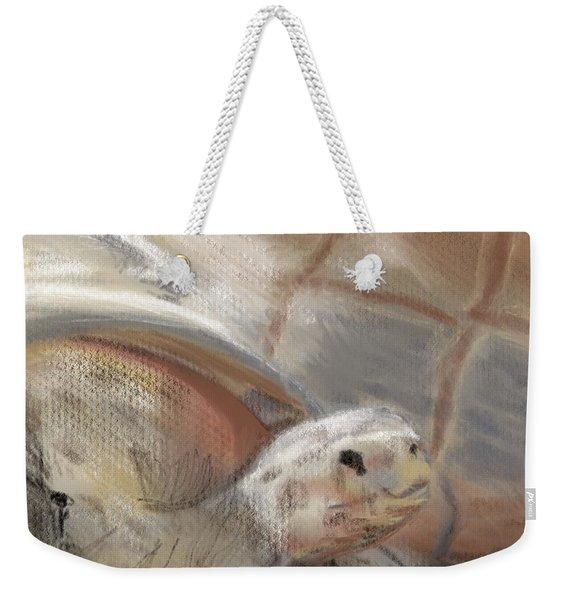 Weekender Tote Bag featuring the digital art Sweet Tortoise by Fe Jones