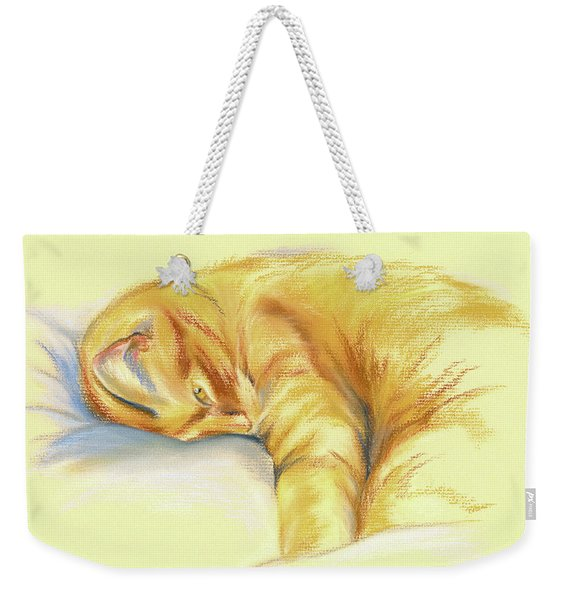 Tabby Cat Relaxed Pose Weekender Tote Bag