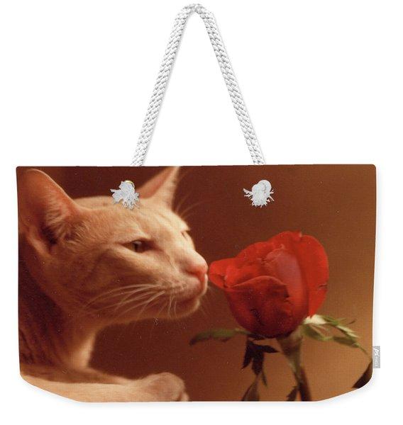 Taffy Weekender Tote Bag