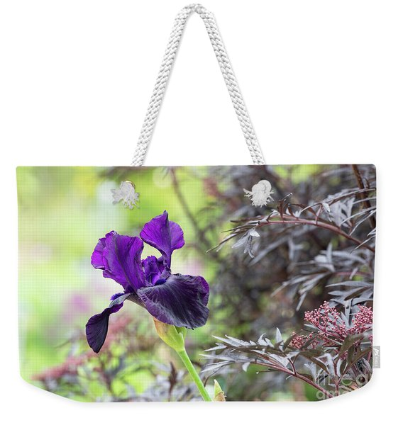 Tall Bearded Iris Licorice Stick Weekender Tote Bag