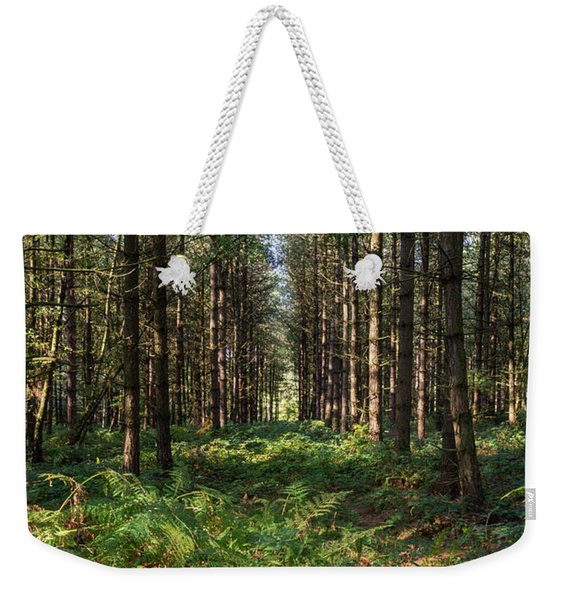 Weekender Tote Bag featuring the photograph Tall Trees In Sherwood Forest by Scott Lyons