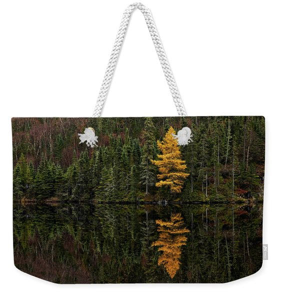 Weekender Tote Bag featuring the photograph Tamarack Defiance by Doug Gibbons